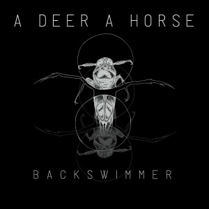 Backswimmer - A Deer A Horse