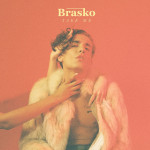 Take Me - Brasko single art