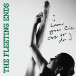 I Know You Lie Cos So Do I - The Fleeting Ends