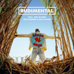 """These Days"" - Rudimental"