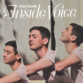 Inside Voice - Joey Dosik