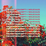 Molecules - The Northern Empty