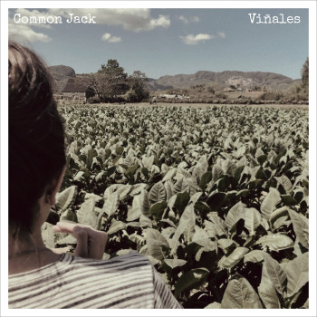 Viñales - Common Jack