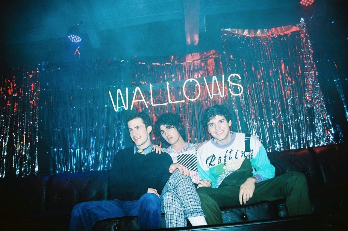 Wallows © Dillon Matthew