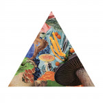 Poison the Well - Modest Mouse's Record Store Day exclusive triangle 7""