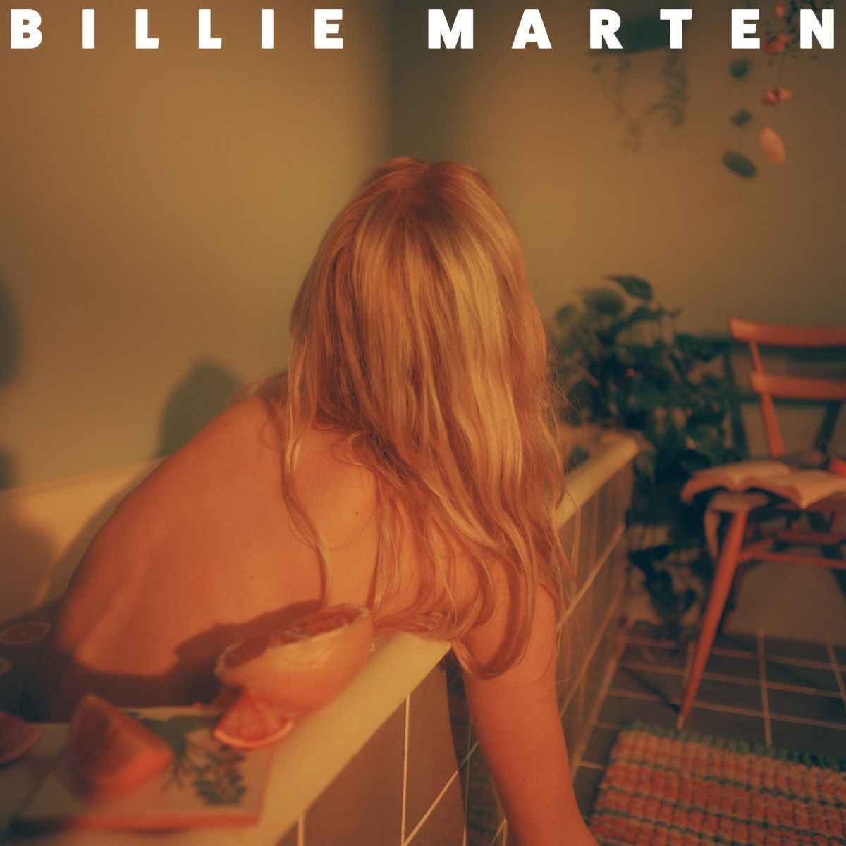 Feeding Seahorses by Hand - Billie Marten