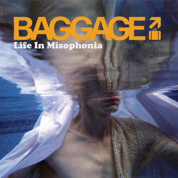 Life in Misophonia - Baggage
