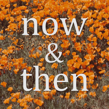 Now & Then - Lily Kershaw