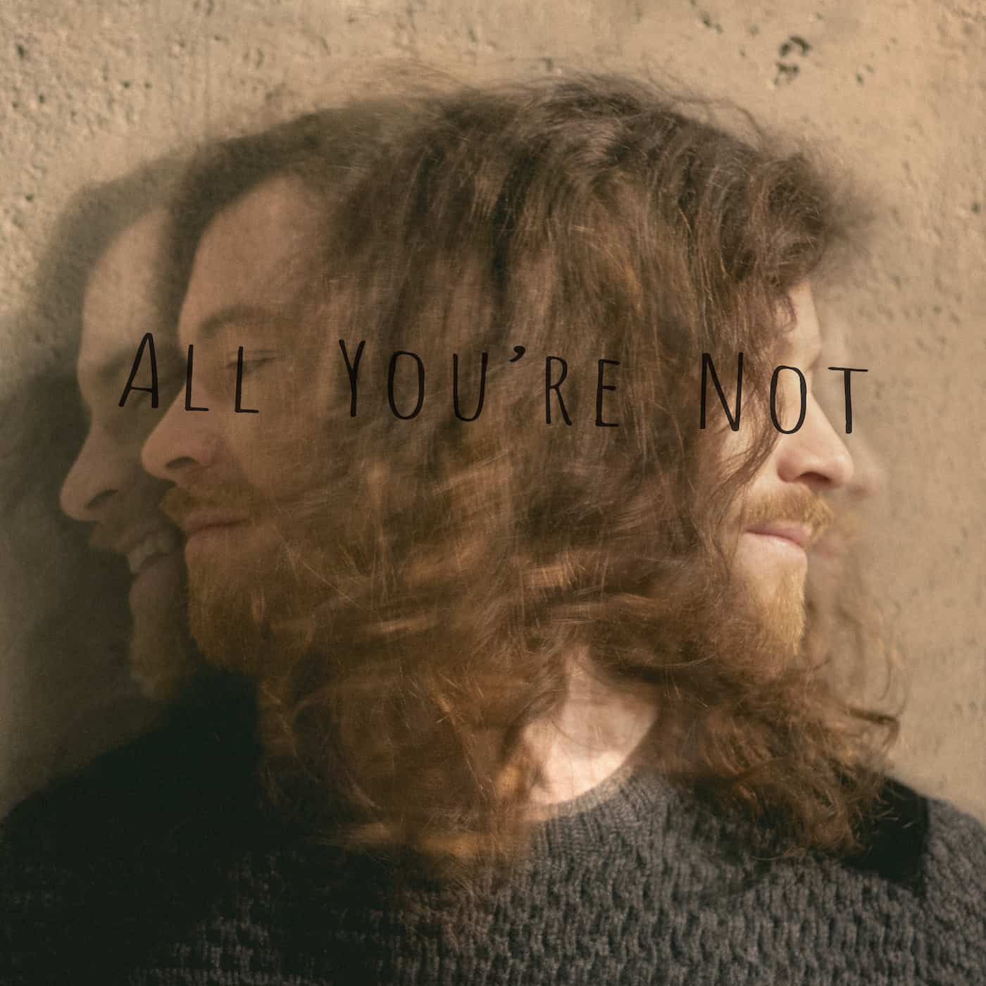 All You're Not - FERGUS