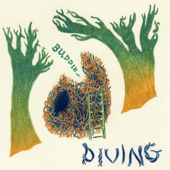 Diving - Buddie