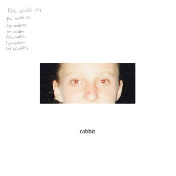 rabbit - Fox Academy