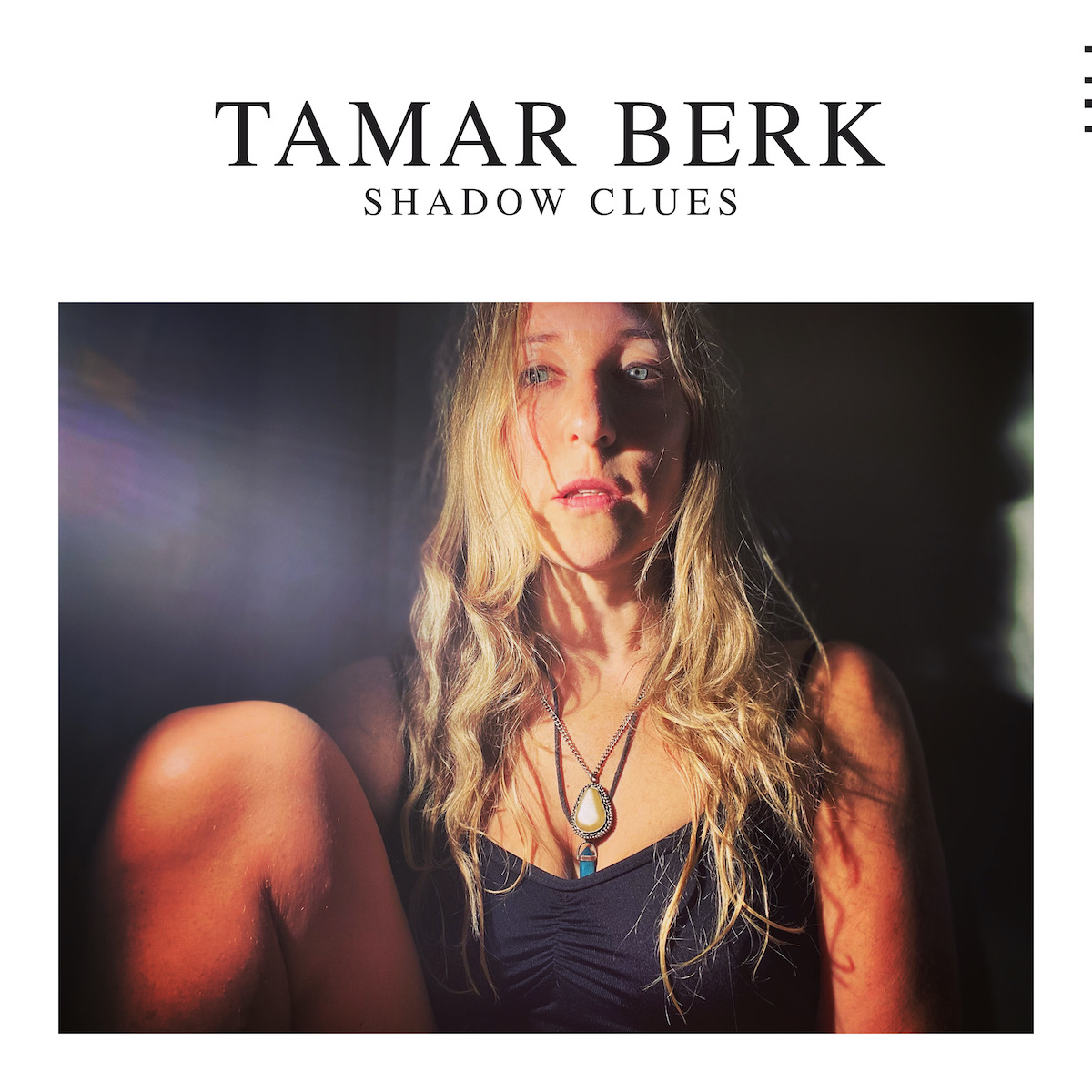 Shadow Clues - Tamar Berk
