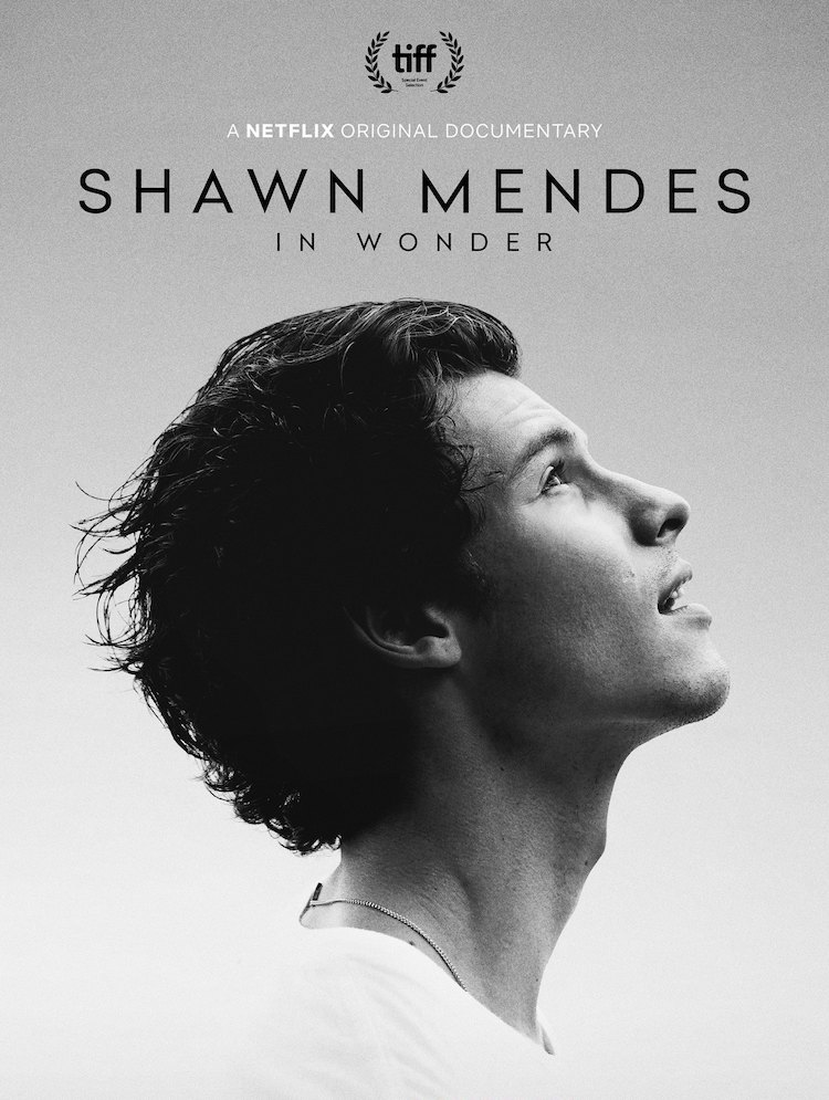 'Shawn Mendes: In Wonder' promotional poster